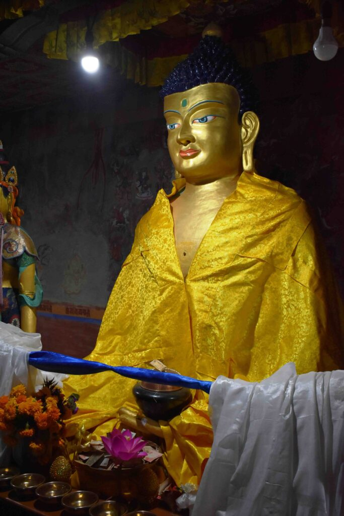 Sakyamuni Buddha (The Buddha of the past)