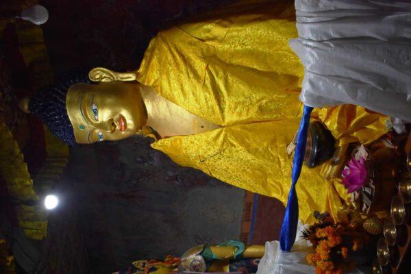 Sakyamuni Buddha (The Buddha of the past image