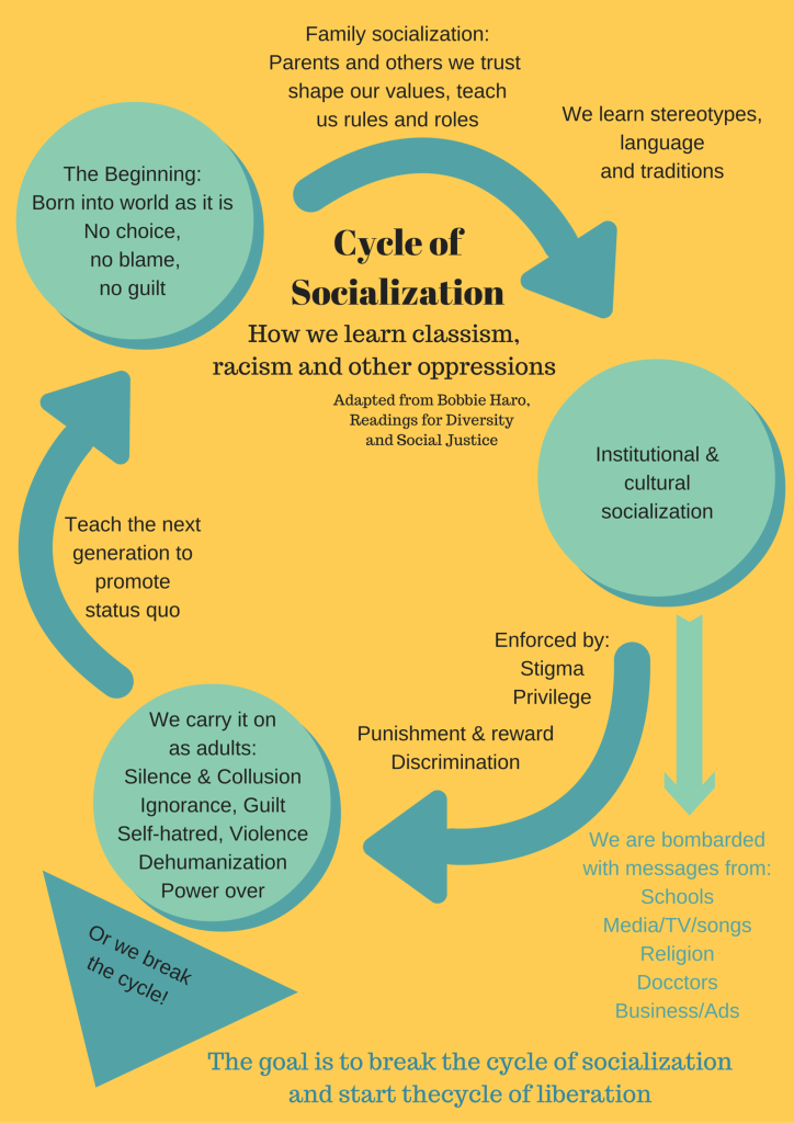 Cycle of socialization - Seniors Today
