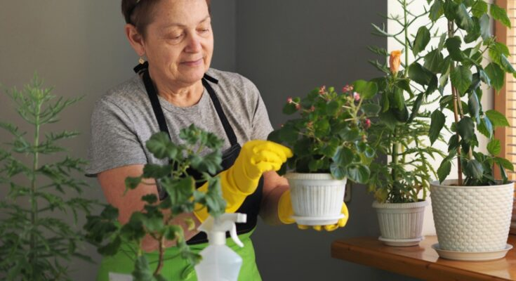 How to Get More Natural Oxygen at Home - Seniors Today