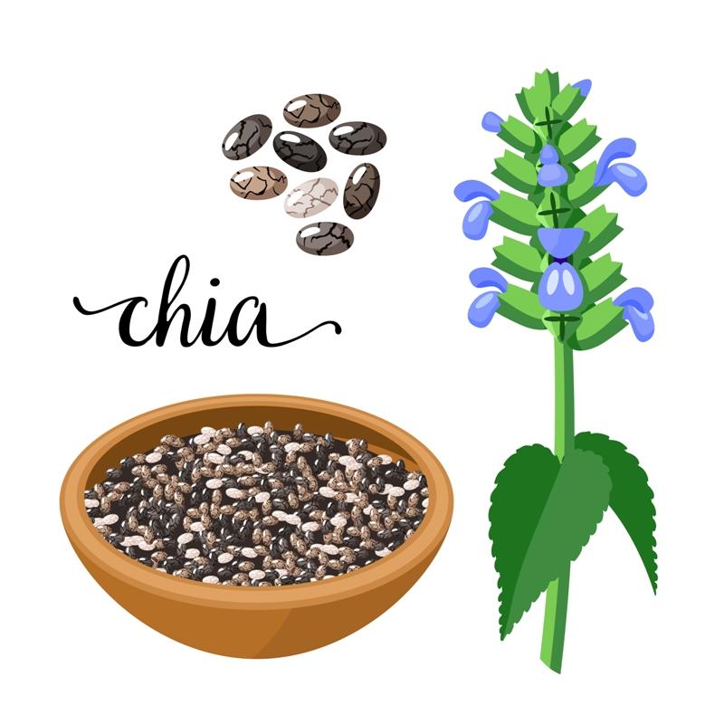 4. Chia seeds