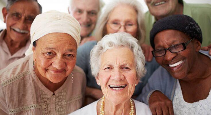 Fafda Files - Seniors