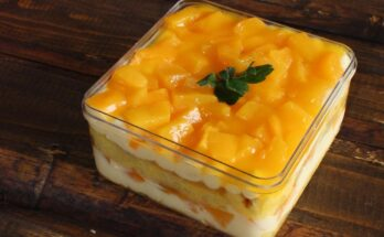 Recipe Easy & Delicious Mango Pudding