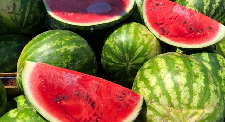 Why Watermelon Is Your Best Friend in Summer - Seniors Today