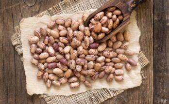 The Magical Beans - Sushmita Bhattrai